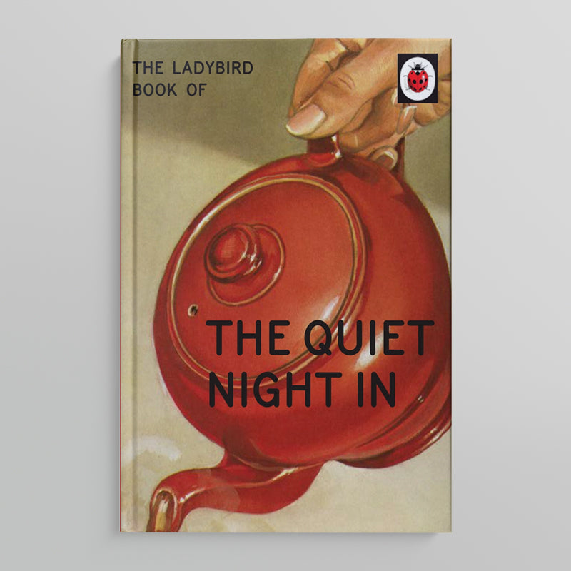 A LADYBIRD BOOK FOR GROWN-UPS | The Quite Night In