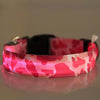 LED Safety Dog Collar - Trending Curve