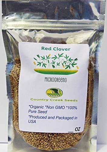 Red Clover, Microgreen for Sprouting, Organic Red Clover Sprouting Seeds - Country Creek LLC
