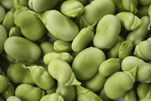 BEAN, FAVA WINDSOR BUSH, HEIRLOOM, ORGANIC, NON GMO SEEDS, TASTY, BUTTERY N HEALTY
