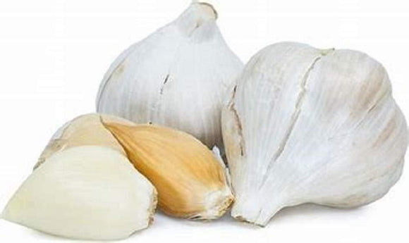 Elephant Garlic, Great for Planting, Eating or Cooking! Non GMO. Milder Tasting Garlic