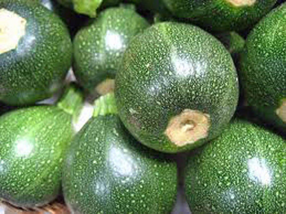 Zucchini Seeds, Round Squash, Heirloom, Organic, NON GMO,  Healthy Vegetable - Country Creek LLC