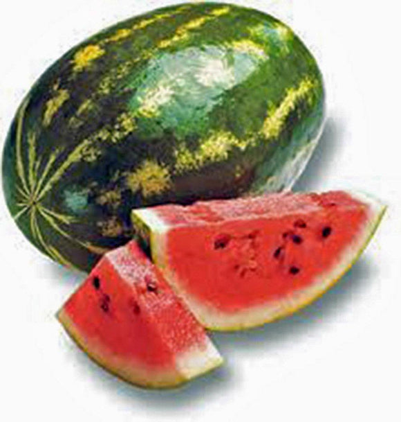 WATERMELON, FLORIDA GIANT, HEIRLOOM, ORGANIC 100 SEEDS, LARGE & SWEET TASTING - Country Creek LLC