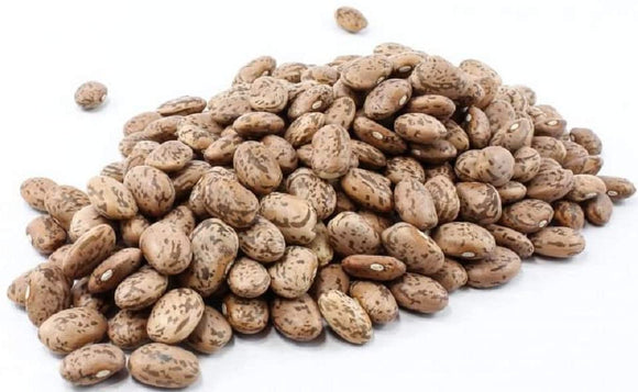 Shell Pinto Bean Seeds  - Tasty and Easy to Grow, These Make for Great chilies and refried Beans. - Country Creek LLC