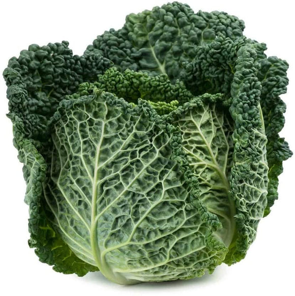 Savoy Perfection Cabbage Seeds- Non-GMO - A Unique Hardy Crop with a Sweet and Delicate Flavor That Makes an Excellent Addition to Many Dishes. - Country Creek LLC