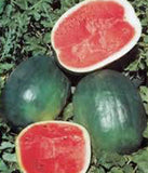 WATERMELON, BLACK DIAMOND, HEIRLOOM, ORGANIC 100 SEEDS, SUPER SWEET ROUND MELON - Country Creek LLC