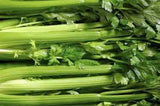 Celery Seed, Tendercrisp, NON GMO Seeds, Heirloom, Organic, Great for Gardening - Country Creek LLC