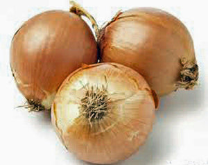 Onion, Yellow Spanish onion seeds, Heirloom, Organic , NON- GMO, One of the most popular for gardeners, this jumbo-sized onion is mild with golden brown skin. - Country Creek LLC