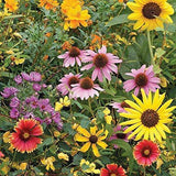 WILDFLOWER SEED MIX , ASSORMENT OF PERENNIAL & ANNUAL , 2 OUNCE PACKAGE - Country Creek LLC