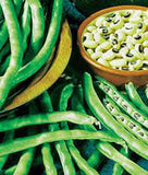 Peas, California Black Eye, Heirloom, Organic , NON GMO Seeds, a Simply Delicious Pea - Country Creek LLC