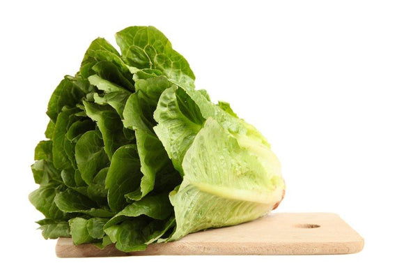 Lettuce, Paris Island Romaine Lettuce Seeds, Heirloom, Non GMO - Country Creek LLC