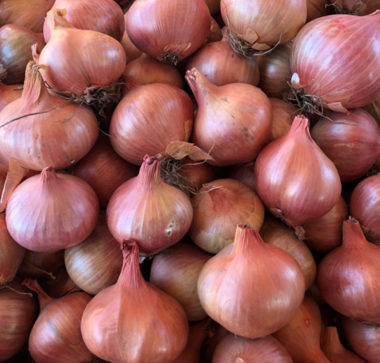 Shallots, Freshly Harvested, Large to Medium Size, Restaurant Quality, Great for cooking with a succulent flavor, a gourmet delight.