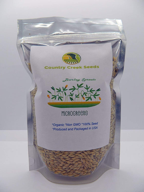 Barley - Organic- NON GMO microgreen seeds for Sprouting Sprouts - Country Creek LLC