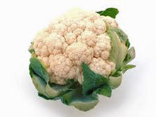 CAULIFOWER, SNOWBALL Y, HEIRLOOM, ORGANIC 25+ SEEDS, LARGE,DELICIOUS AND HEALTHY