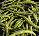 BEAN, COMMODORE BUSH, HEIRLOOM, ORGANIC, NON GMO SEEDS, GREAT TASTING FRESH OR COOKED - Country Creek LLC