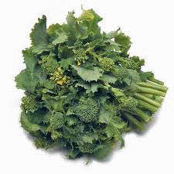 BROCCOLI RAAB, RAPINI, HEIRLOOM, ORGANIC, NON GMO SEEDS, DELICIOUS A CULINARY DELIGHT - Country Creek LLC