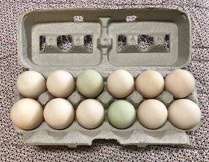 PASTURE RAISED DUCK EGGS