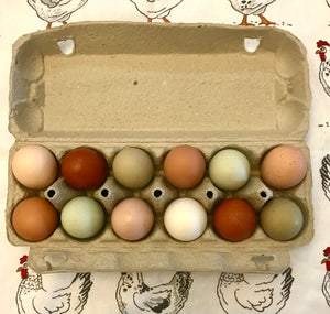 PASTURE RAISED CHICKEN EGGS:  MIXED MEDIUM/PULLET (SMALL)