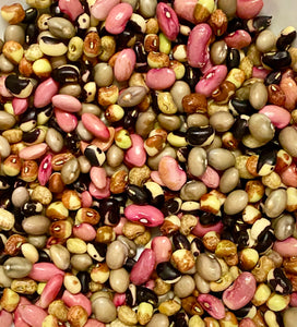 HEIRLOOM BEANS:  MIXED FRESH-SHELLED