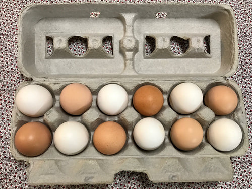 PASTURE RAISED CHICKEN EGGS: MIXED LARGE/XL/JUMBO