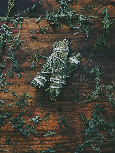Cedar Herb Bundle