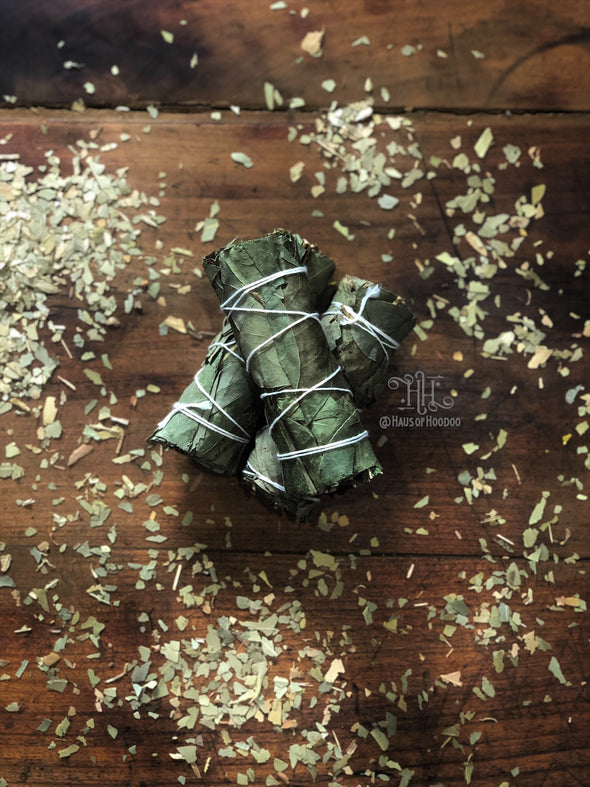 Eucalyptus Herb Bundle