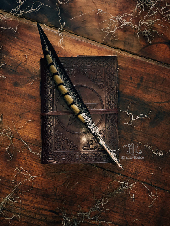 Feather Calligraphy Quill (Pheasant)