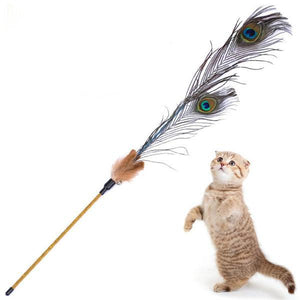 Kitten Cat Teaser Interactive Toy Rod with Bell and Peacock Feathers-Toys-Pixie Cheetah-Pixie Cheetah
