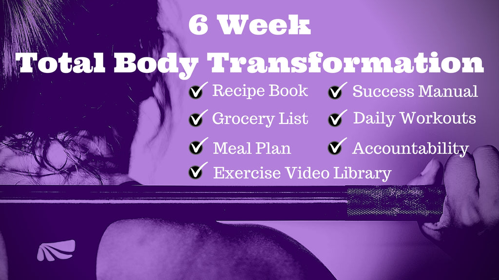 6 Week Transformation Program - Mike Padua Jr