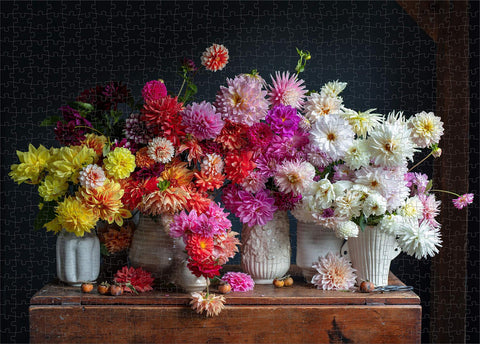 Puriri Lane | Dahlias |France Palmer | 750 Piece Puizzle