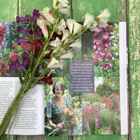 Puriri Lane | New Zealand Gardener Magazine | January 2021