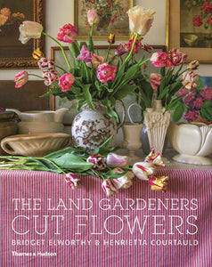 Puriri Lane | The Land Gardeners | Bridget Elworthy & Henrietta Courtauld