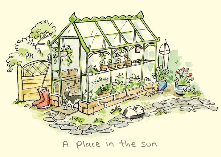 A place in the sun  | Card