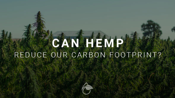 Can Hemp Reduce Our Carbon Footprint?