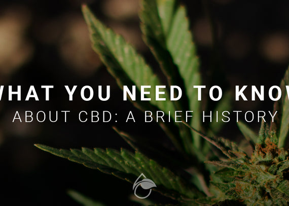 What You Need to Know About CBD: A Brief History