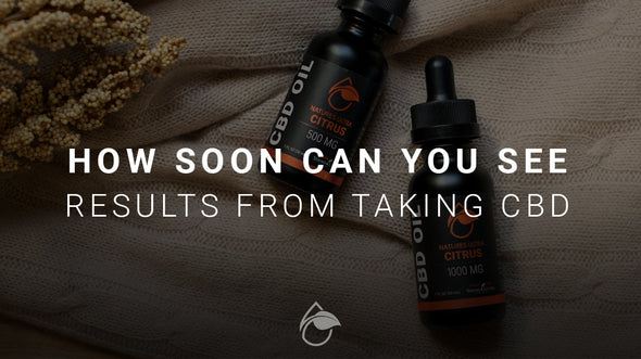 How Soon Can You See Results from Taking CBD?