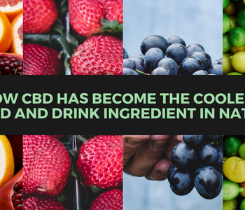 How CBD has become the coolest food and drink ingredient in the nation