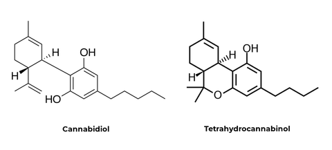 CBD and THC Molecular Structure