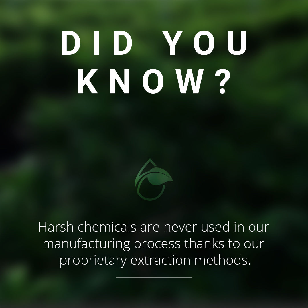 DYK - No Chemicals
