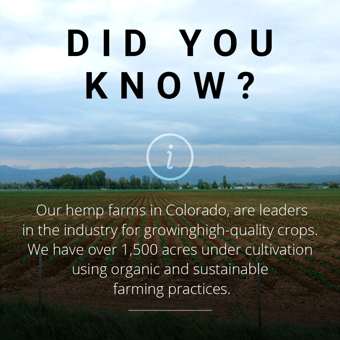 DYK - Hemp Farm