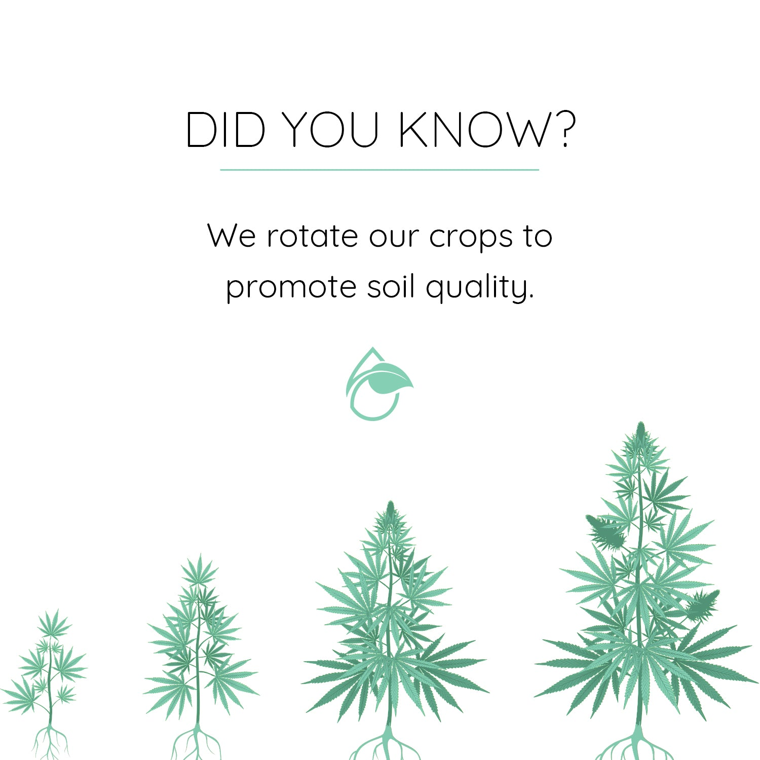 DYK - Rotate Crops