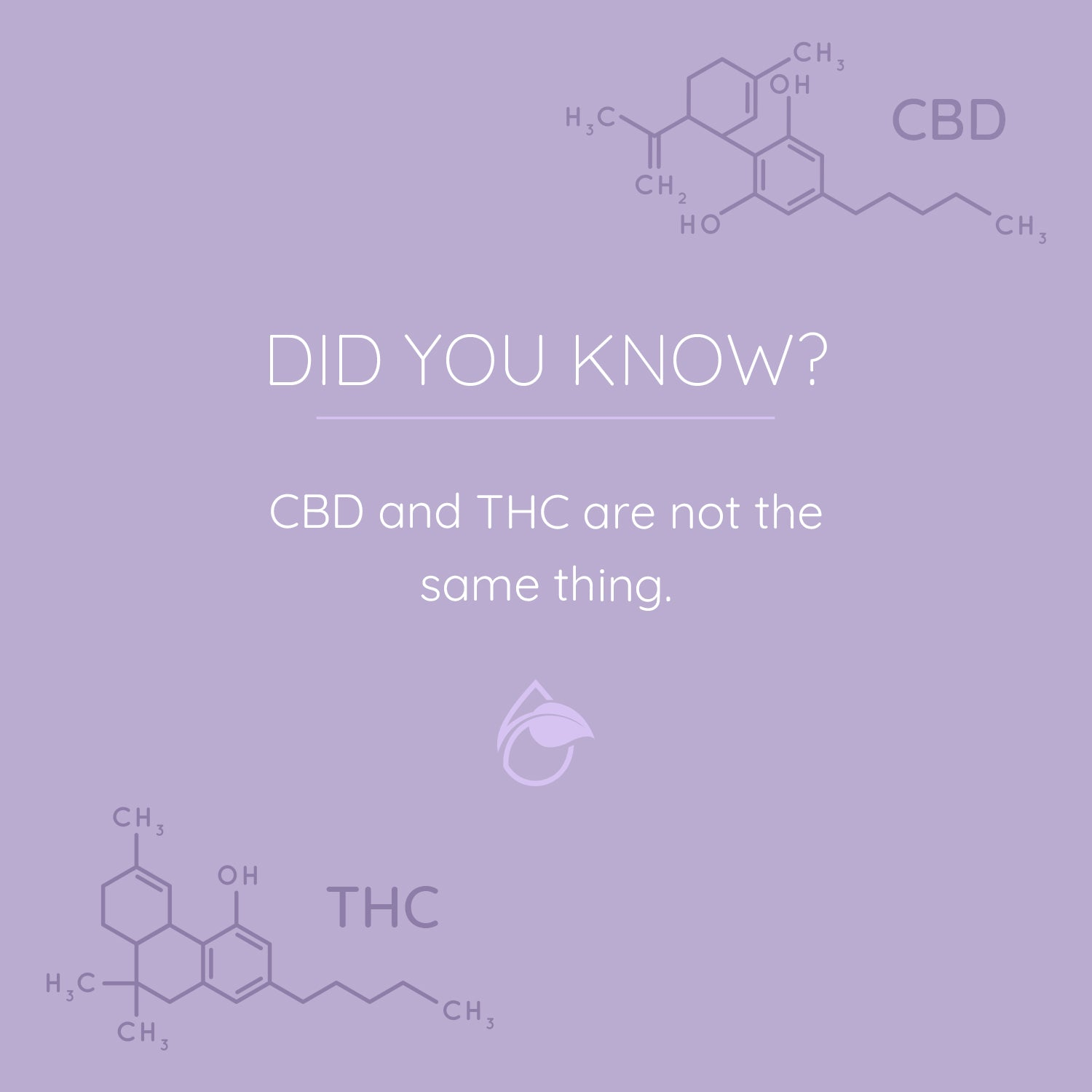 DYK - CBD is Not THC