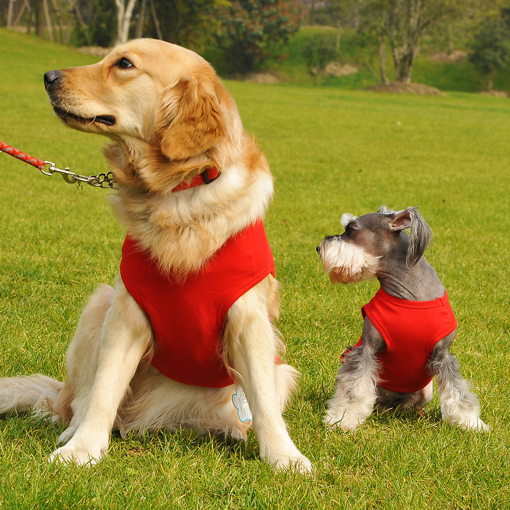 Small Medium Large Dog Shirt 5 Colors Dezyne4u