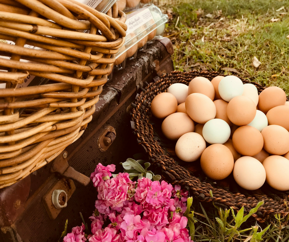 Pastured Free Range Eggs