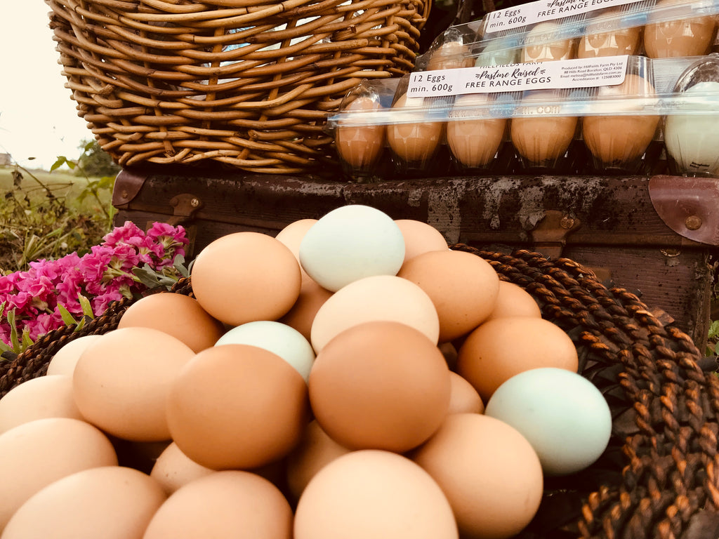 Pastured Free Range Eggs ~ Weekly