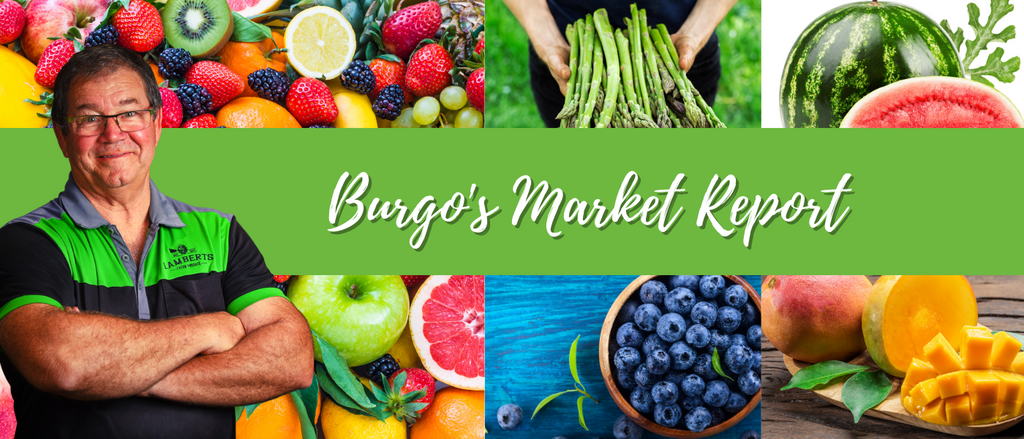 Michael-Burge-Fresh-Produce-Market-Update