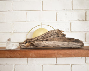 Driftwood + Brass wall hanging #07