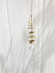 Eucalyptus Sun Catcher - Feb 21