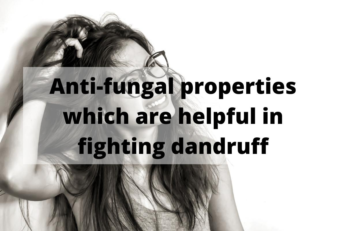 Mullein Benefits: Anti-fungal properties which are helpful in fighting dandruff