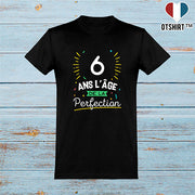 T shirt homme 6 ans la perfection